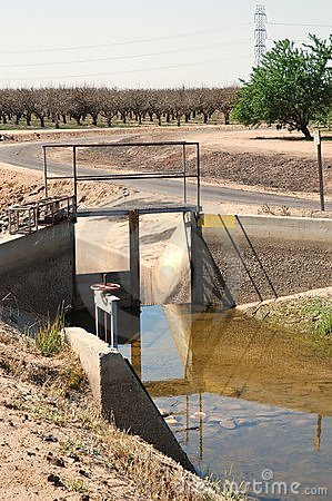 Irrigation canal gate with orchards in background