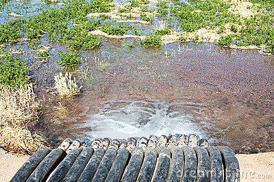 Irrigation canal & siphon tubes