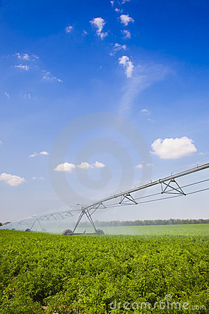 Free Irrigation In Field / Agriculture Royalty Free Stock Images - 19560049