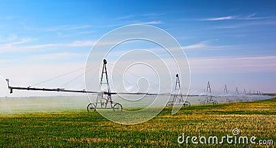Irrigation machine waters crop on the field