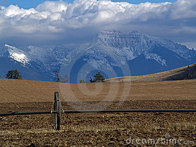 Irrigation Pipe, Field and Snowcapped Mountains