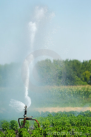 Free Irrigation Spout In A Field Royalty Free Stock Photos - 1529098