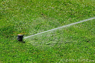 Irrigation system throwing water