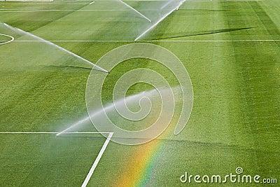 Irrigation turf