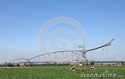 Irrigazione a pioggia nel campo per innaffiare immagine for Timer per innaffiare