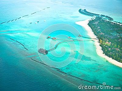 Isla del trópico del paraíso