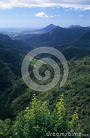 Isla negra de Isla Mauricio de la garganta del río
