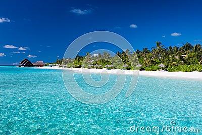 Isla tropical con la playa arenosa
