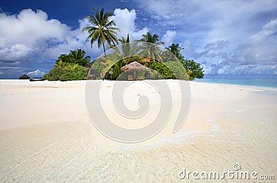 Isla tropical, paraíso del coulpe.