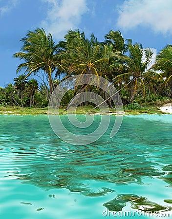 Free Island Stock Image - 2178931