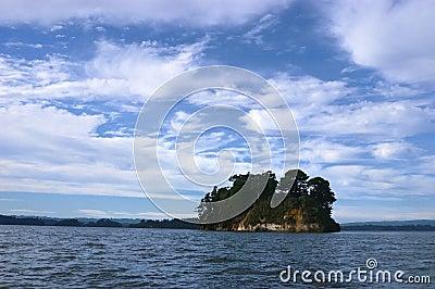 Island amid the lake