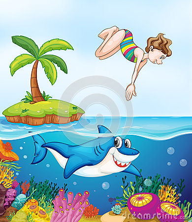 Island, corel, shark and girl diving