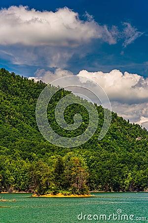 Free Island In Watauga Lake,  Cherokee National Forest, Tennessee. Stock Photo - 47651760