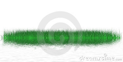 Island of juicy grass