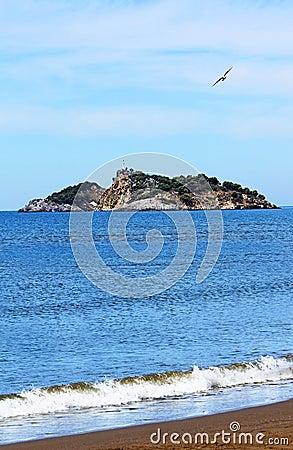 Free Island Near Iztuzu Beach And A Seagull Royalty Free Stock Image - 24846926