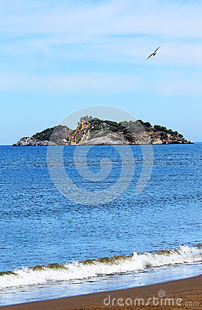 Island near Iztuzu beach and a seagull