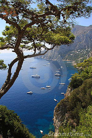 Free Island Of Capri Royalty Free Stock Image - 6308026