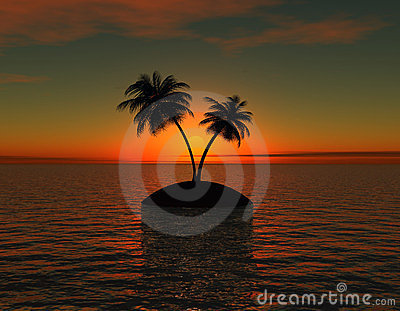 Island with palm  at sunset