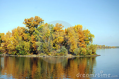 Island with trees