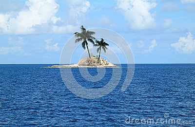 Island with two palm