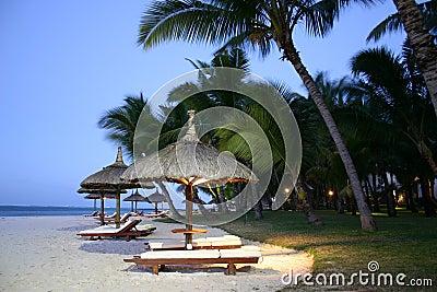 Island Umbrellas