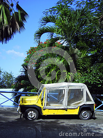 Island vehicle  flat tires by palm trees Bequia St. Vincent and