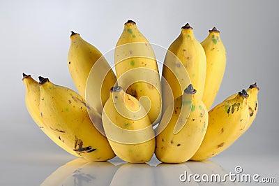 Isolate bunch of ripe banana
