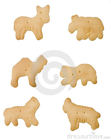 Isolated Animal Cracker