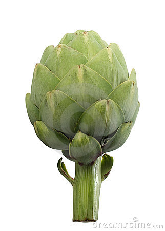 Isolated Artichoke