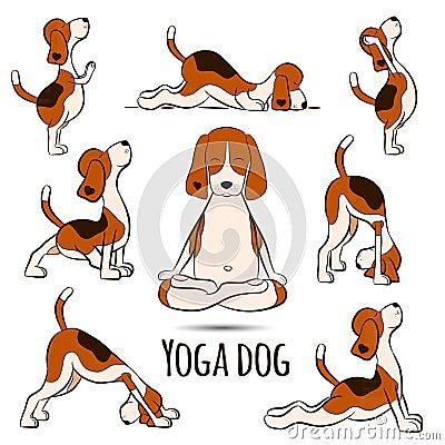 Isolated cartoon funny dog beagle doing yoga position Vector Illustration
