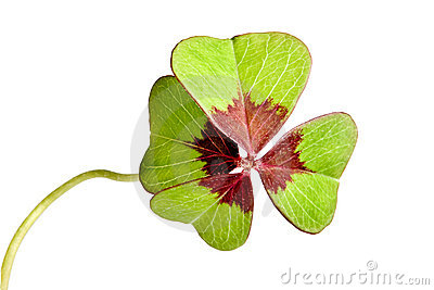 Isolated clover