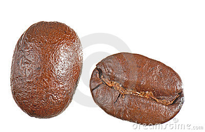 Isolated Coffee Beans