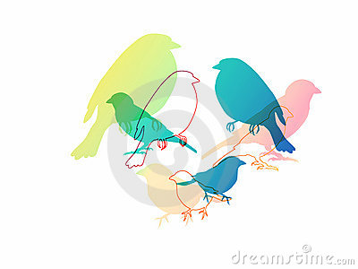 Isolated colorful birds illustration
