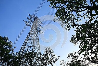 Isolated Elecrical tower with plant environment