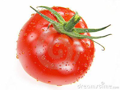 Isolated Fresh Tomato