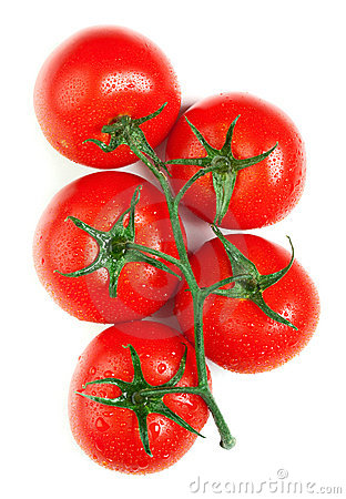Free Isolated Fresh Tomatoes Royalty Free Stock Images - 19083429
