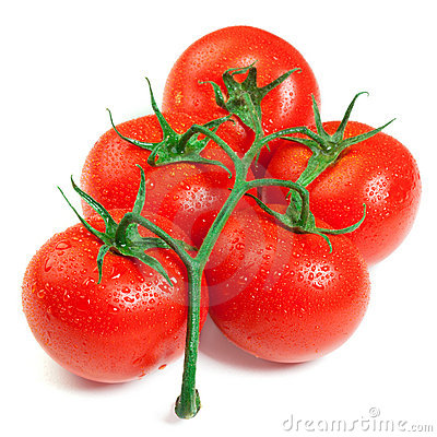 Free Isolated Fresh Tomatoes Royalty Free Stock Images - 19266839
