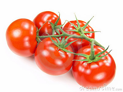 Isolated Fresh Tomatoes