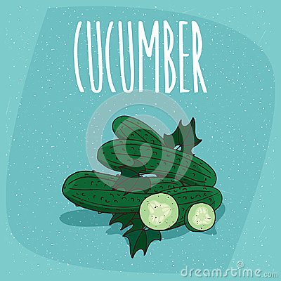 Free Isolated Fruits Cucumber Vegetable Whole And Cut Royalty Free Stock Image - 94959986