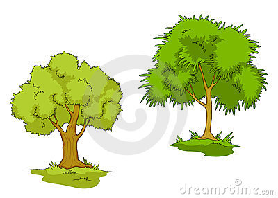Isolated green trees