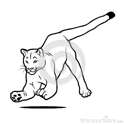 Isolated jumping cougar