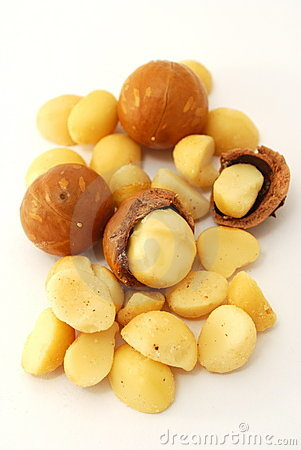 Isolated macadamia nuts