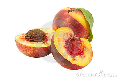 Isolated nectarine
