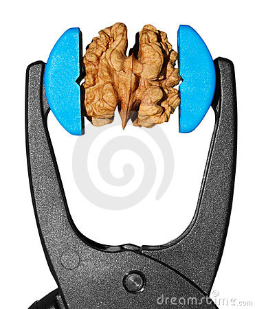 Free Isolated Nut In Grip Vice Stock Images - 2632784