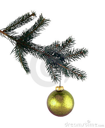 Isolated pine branch and gold glass