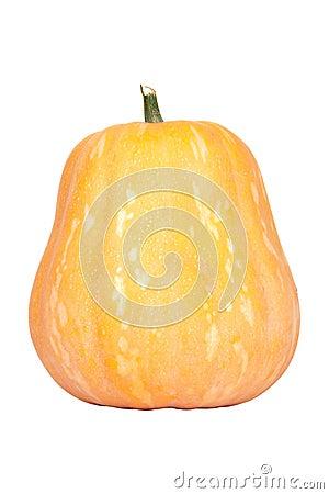 Isolated pumpkin