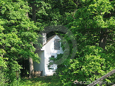Isolated Romanian cottage in the woods