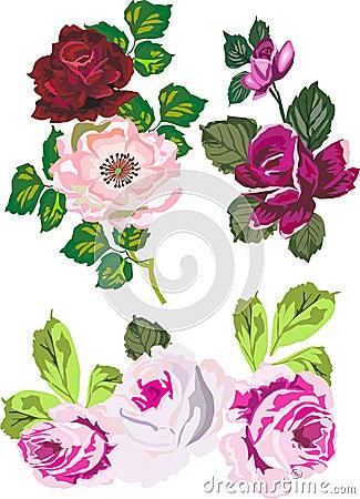 Isolated rose decoration