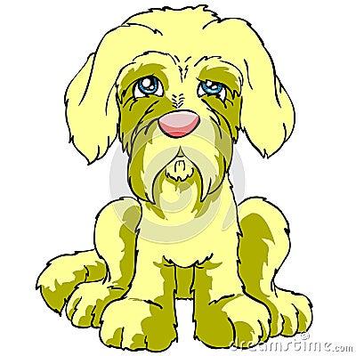 Isolated sad puppy dog