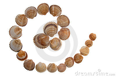 Isolated shell letter @
